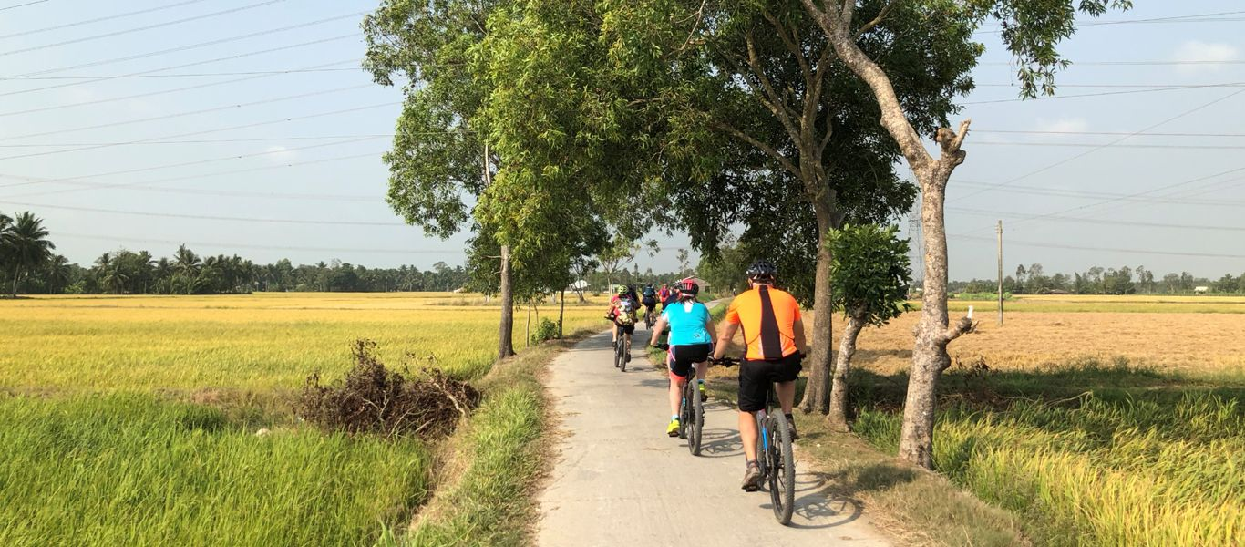 Cycling in the rice paddy in Mekong Delta.